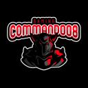 command008